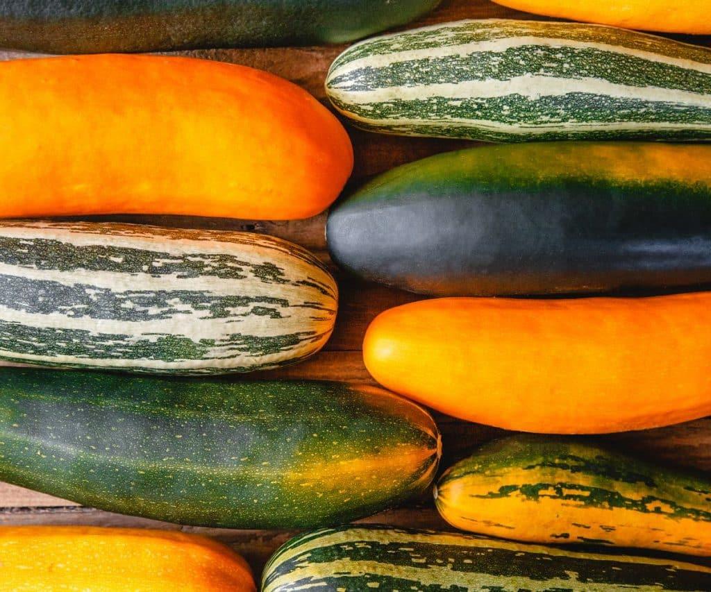 Wie lange halten sich gekochte Zucchini