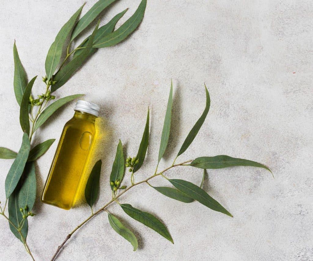 Olivenöl Haltbarkeit