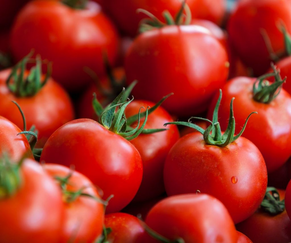 Wie lagert man Tomaten?