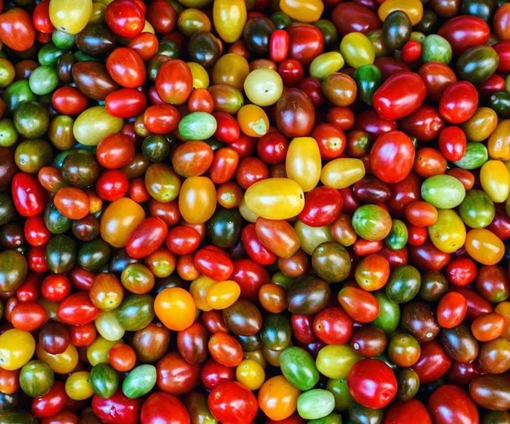 Wie lange halten sich Tomaten ungekühlt?