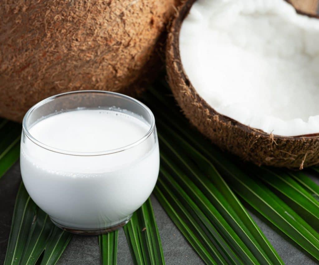 Wie friert man Kokosnussmilch ein?