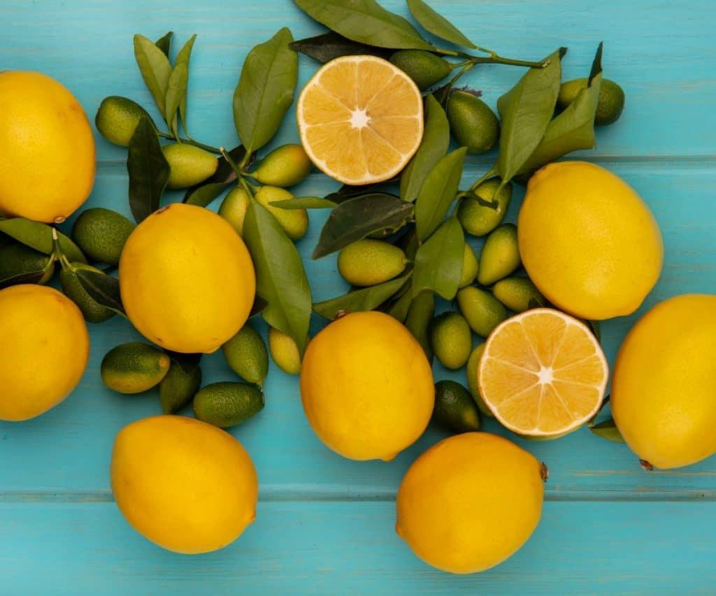 Kann man Zitronen einfrieren
